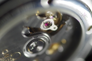 Transparent watch back with mechanism on show