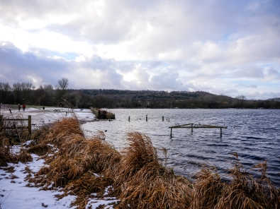 Westport lake - wintery day