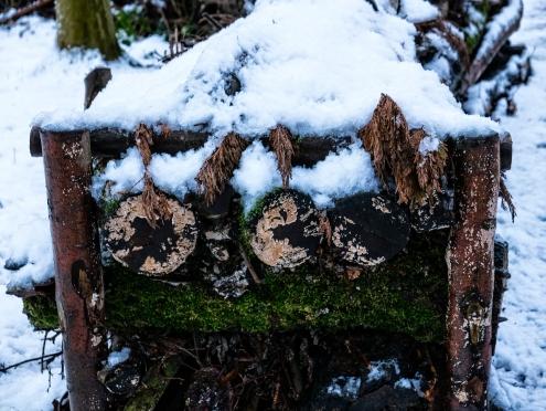 Snow on log pile
