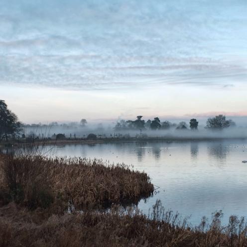 Rolling mist across the treeline, Trentham