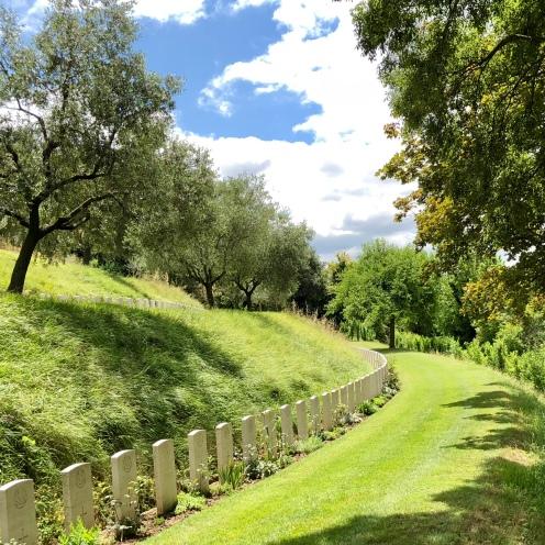 Graves on olive tree hillside, Gradara, North Italy