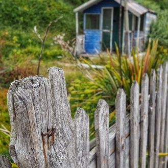 Old fence and shack