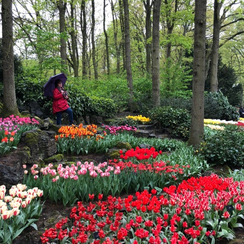 Keukenhof Garden Show, Holland