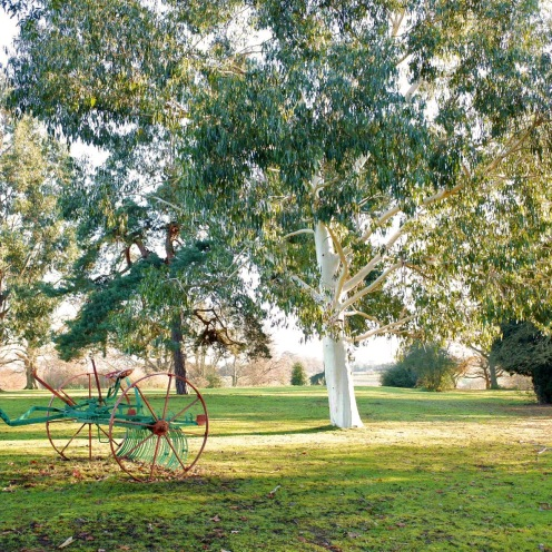 Tree and cart