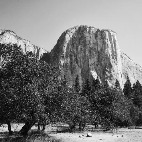 Sentinel rock, Yosemite national park