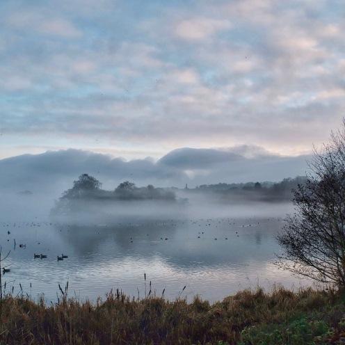 Trentham lake mist