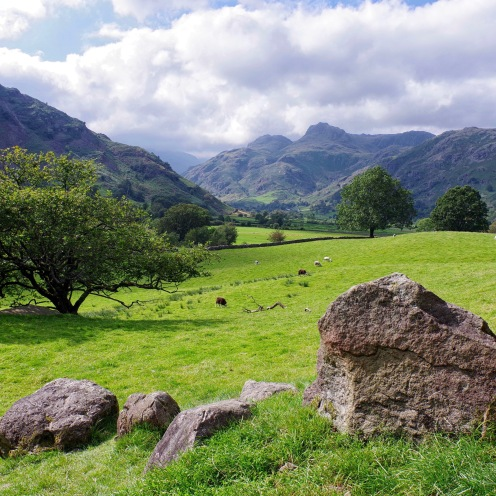 Langdales from field, Cumbria