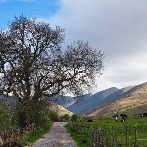 Troutbeck valley, Cumbria